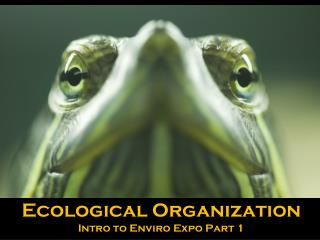 Ecological Organization Intro to  Enviro  Expo Part 1