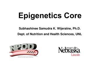 Epigenetics  Core