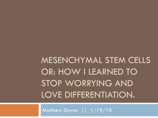 Mesenchymal  Stem Cells Or: How I learned to Stop Worrying and Love Differentiation.