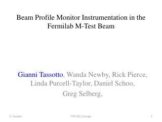 Beam Profile Monitor Instrumentation in the Fermilab M- Test Beam