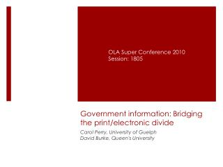 Government information: Bridging the print/electronic divide