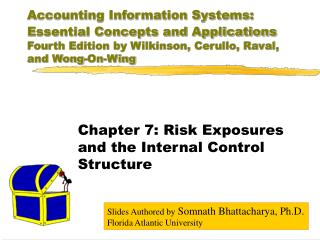 Accounting Information Systems: Essential Concepts and ...