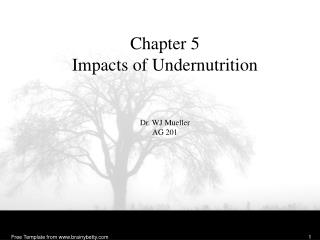 Chapter 5 Impacts of  Undernutrition Dr. WJ Mueller AG 201