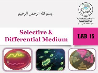 Selective & Differential Medium