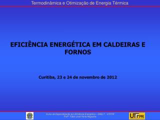 EFICIÊNCIA ENERGÉTICA EM CALDEIRAS E  FORNOS Curitiba, 23 e 24 de novembro de 2012