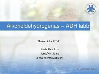 Alkoholdehydrogenas  – ADH labb