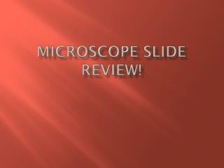 Microscope Slide Review!