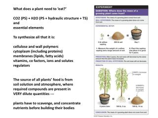 What does a plant need to 'eat?' CO2 (PS) + H2O (PS + hydraulic structure + TS) and
