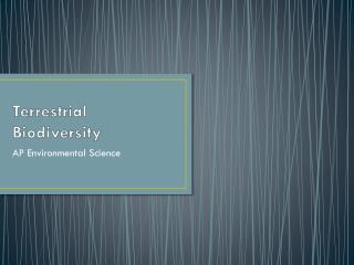Terrestrial Biodiversity
