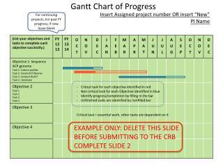 Gantt Chart of Progress