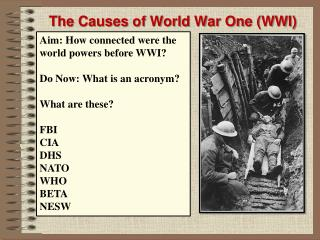 The Causes of World War One (WWI)