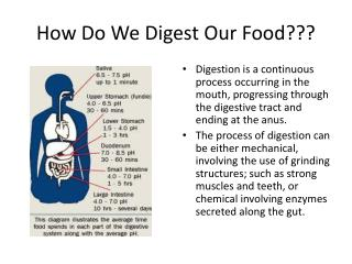 How Do We Digest Our Food???