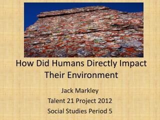 How Did Humans Directly Impact Their Environment