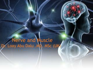 Nerve and Muscle  Dr. Loay Abu Dalu .MD, MSc (UK)