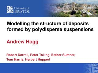 Modelling the structure of deposits formed by polydisperse suspensions