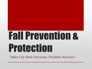 Fall Prevention & Protection