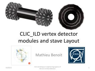 CLIC_ILD vertex detector modules and  s tave Layout