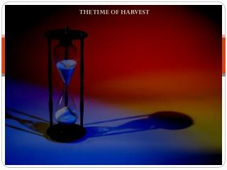 THE TIME OF HARVEST