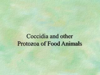 Coccidia and other Protozoa of Ruminants