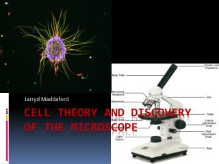 Cell theory and discovery of the Microscope