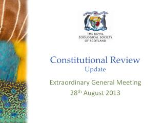 Constitutional Review Update