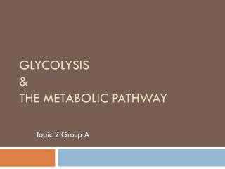 Glycolysis &  The Metabolic Pathway