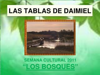 LAS TABLAS DE DAIMIEL