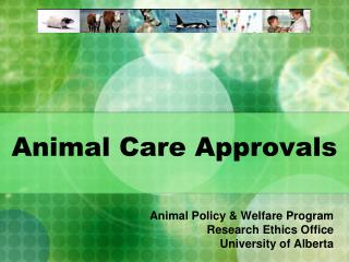 Animal Care Approvals