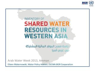 Arab Water Week 2013, Amman Eileen Maternowski, Water Policy Advisor, ESCWA-BGR Cooperation