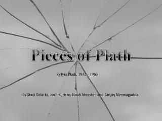 Pieces of Plath