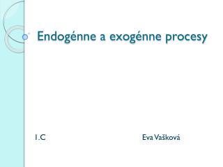 Endogénne a exogénne procesy