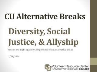 Diversity, Social Justice, &  Allyship