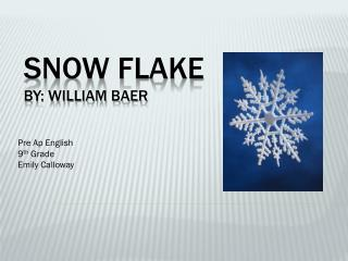 Snow Flake By: William Baer