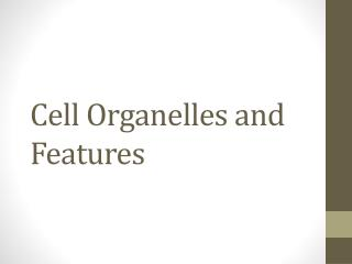 Cell Organelles and Features