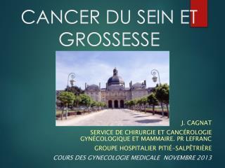 CANCER DU SEIN ET GROSSESSE