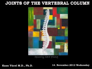 JOINTS OF THE VERTEBRAL COLUMN