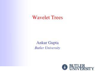 Wavelet Trees