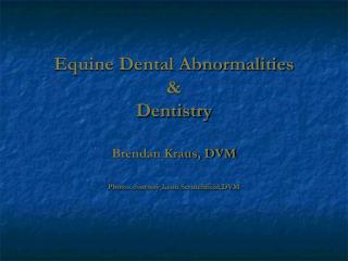 Equine Dental Abnormalities &  Dentistry Brendan Kraus, DVM Photos courtesy Leon Scrutchfield,DVM