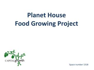 Planet House  Food Growing Project