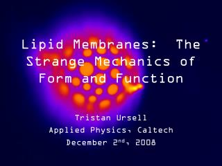 Lipid Membranes:  The Strange Mechanics of Form and Function