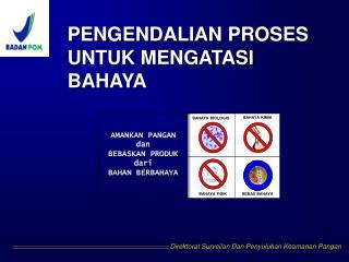 PENGENDALIAN PROSES UNTUK MENGATASI BAHAYA