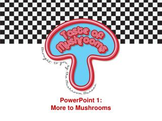 PowerPoint  1:  More to Mushrooms