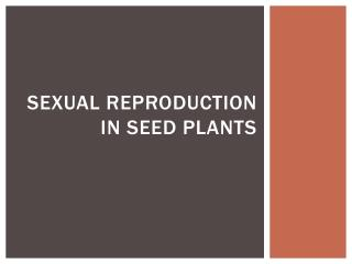 Sexual Reproduction in Seed Plants