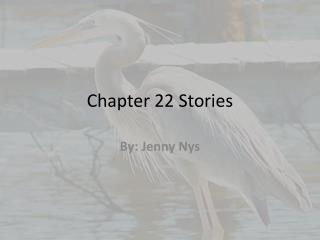 Chapter 22 Stories