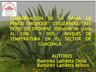 AUTORES Ramírez Landeta Delia Ramírez Landeta Milton