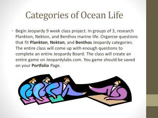 Categories of Ocean Life