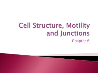 Cell Structure, Motility and Junctions