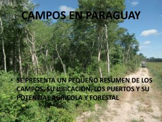 CAMPOS EN PARAGUAY