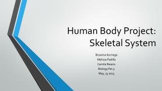 Human Body Project: Skeletal System