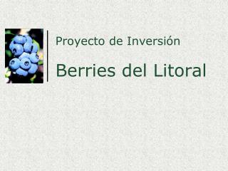 Proyecto de Inversi�n Berries del Litoral